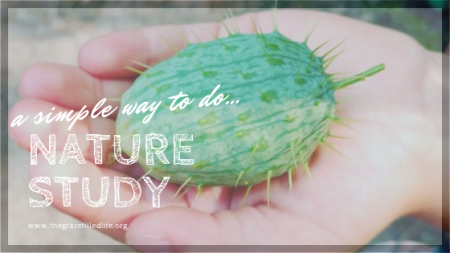 A simple way to do nature study