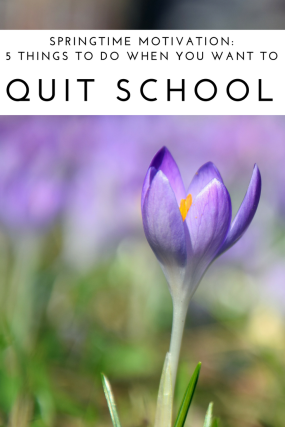 Springtime Motivation_ 5 things to do when you want to quit school (2).png