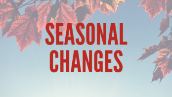Seasonal Changes.png
