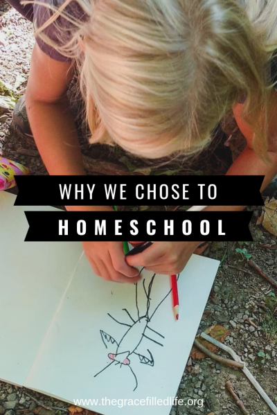 Why we chose to homeschool! Two reasons.