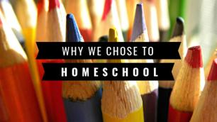 Two reasons to homeschool.