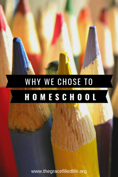 Homeschooling isn't for everyone. Here are two reasons why we chose home education!